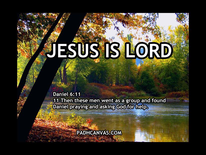 DANIEL 6:11