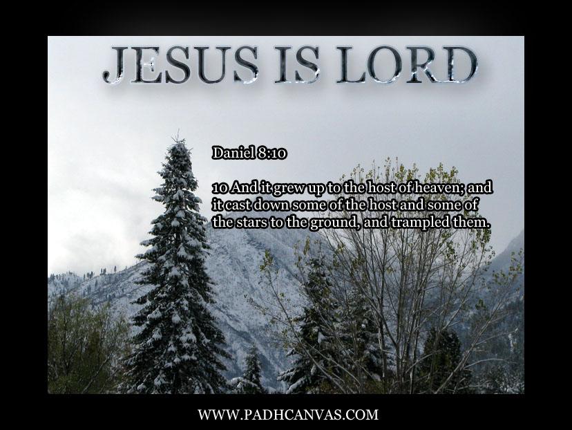 DANIEL 8:10