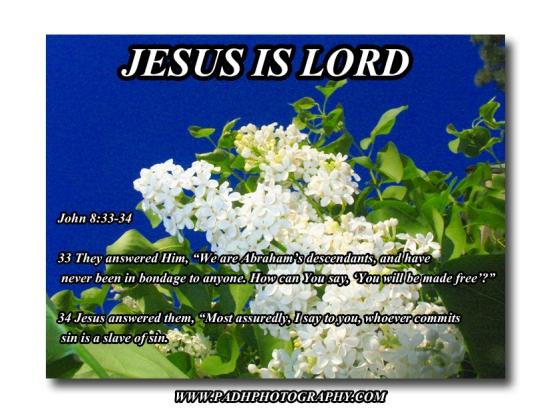 April oil white lilac copy