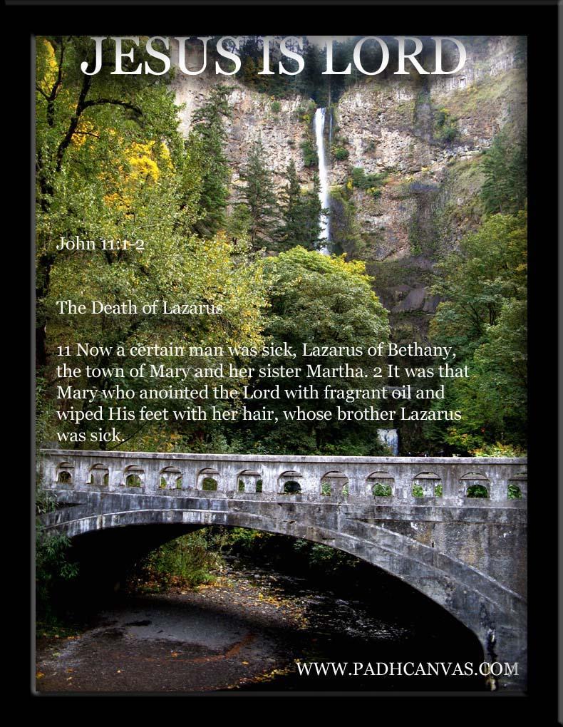IMG_1223 good fall with bridge copy