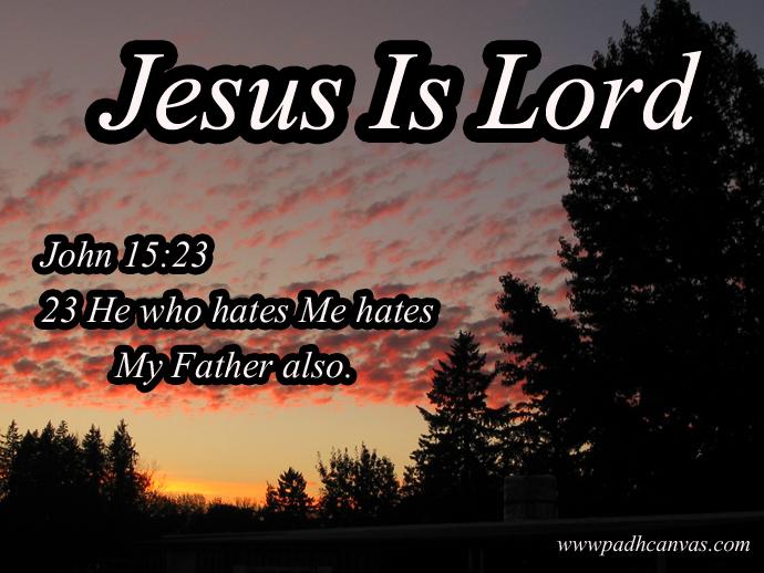 JOHN 15:23