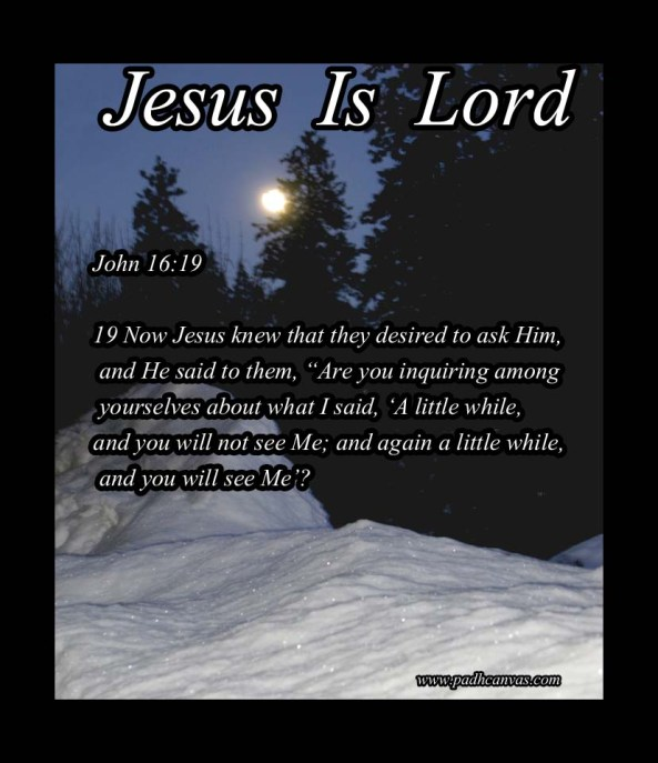 John 16:19