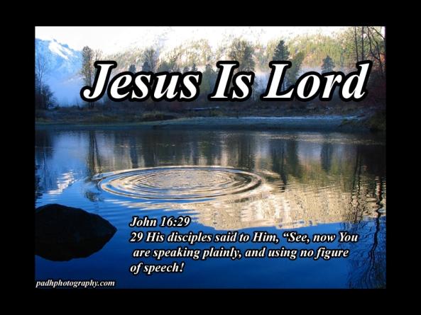 John 16:29