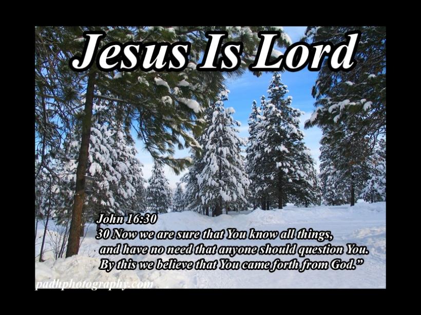 John 16:30