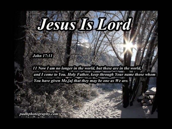 John 17 11