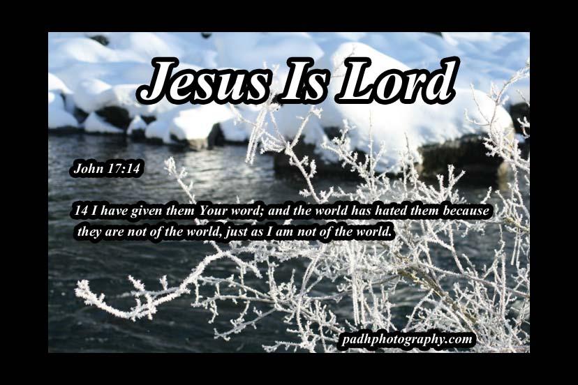 John 17 14