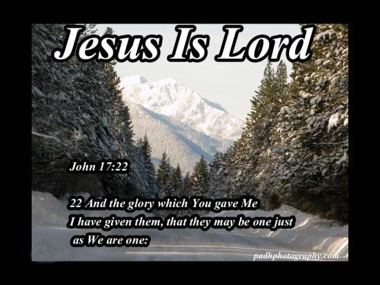 John 17  22
