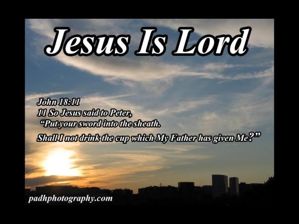 John 18 11