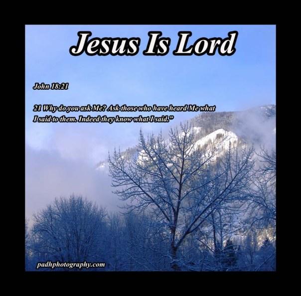 John 18: 21