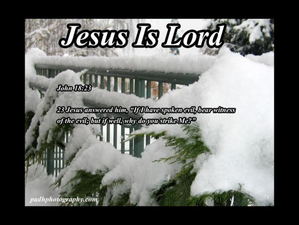 John 18: 23