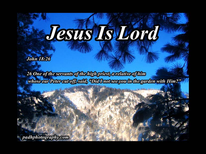 John  18:26