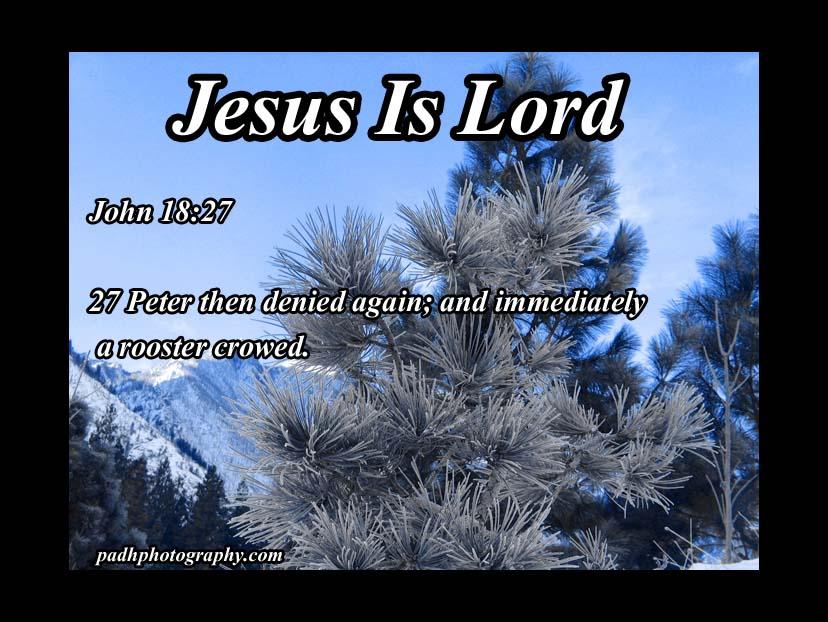 John 18: 27
