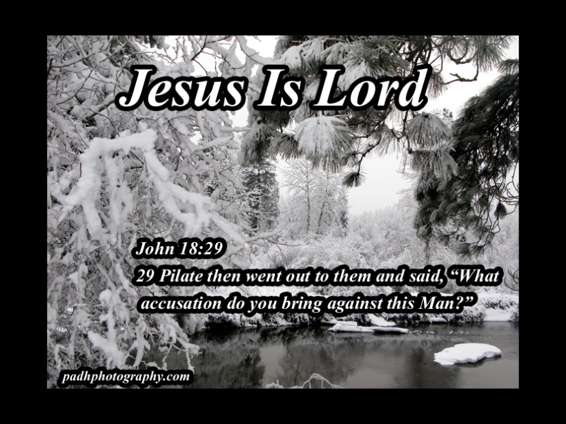 John 18:29