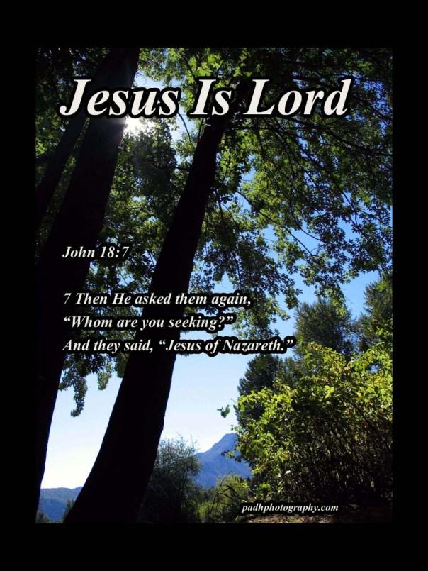 John 18: 7