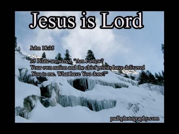 John 18: 35