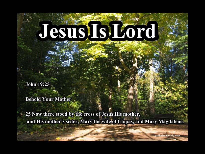 John 19 24