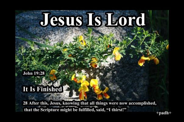 John 19 28