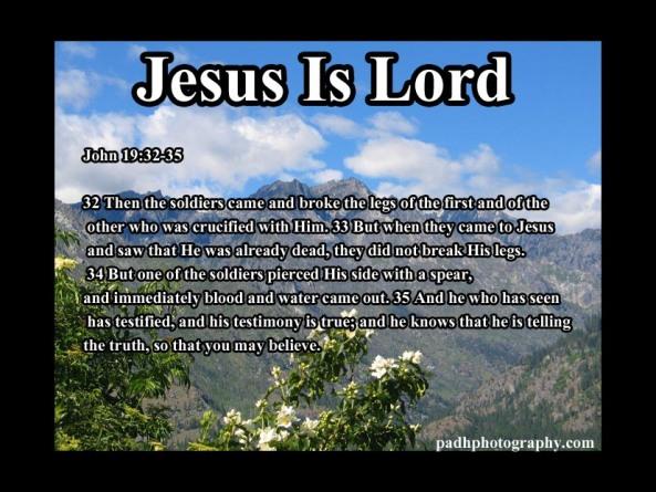 John 19: 32- 35