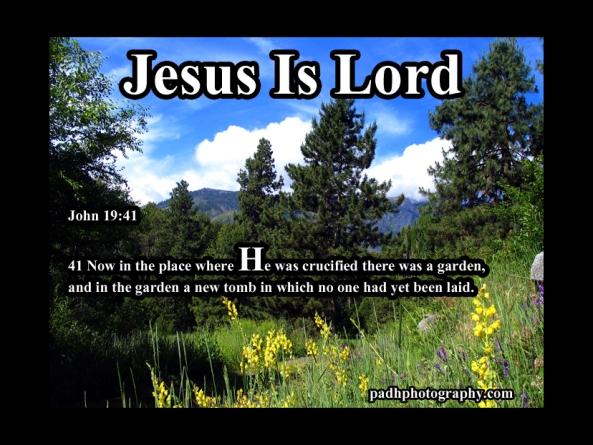 John 19: 41