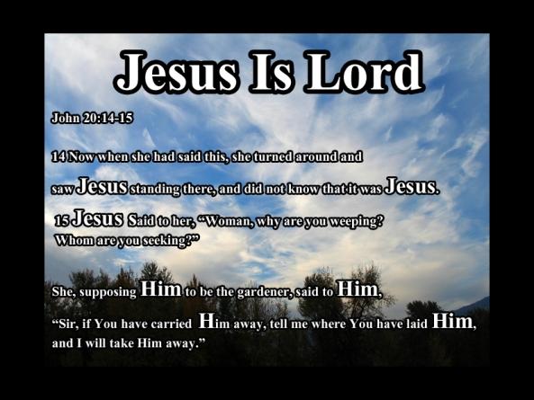John 20 :14 -15