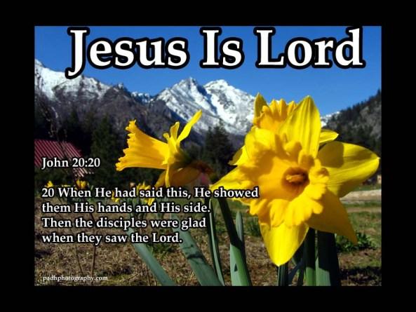 John 20 :20