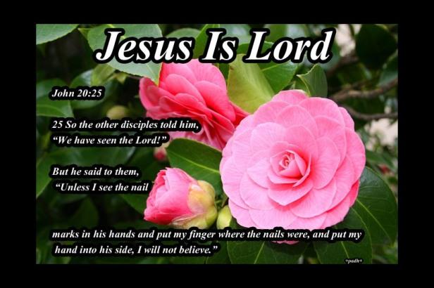 John 20 :25