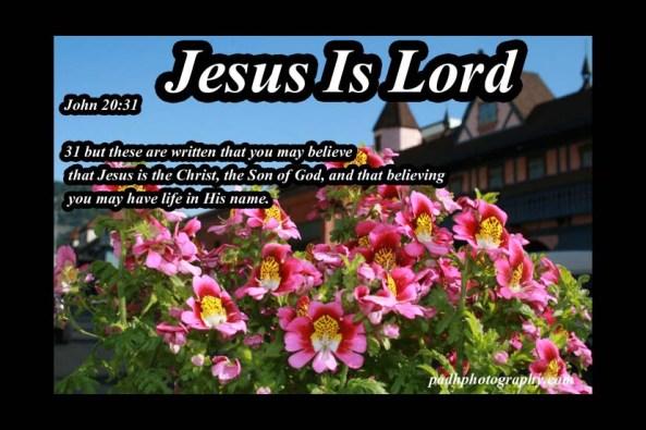 John 20 :31