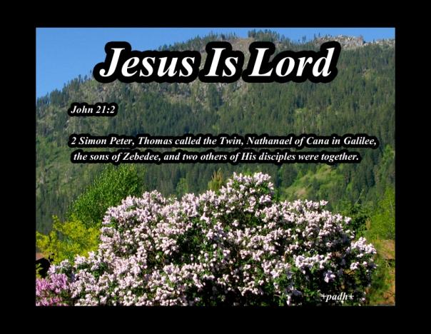 John 21: 2