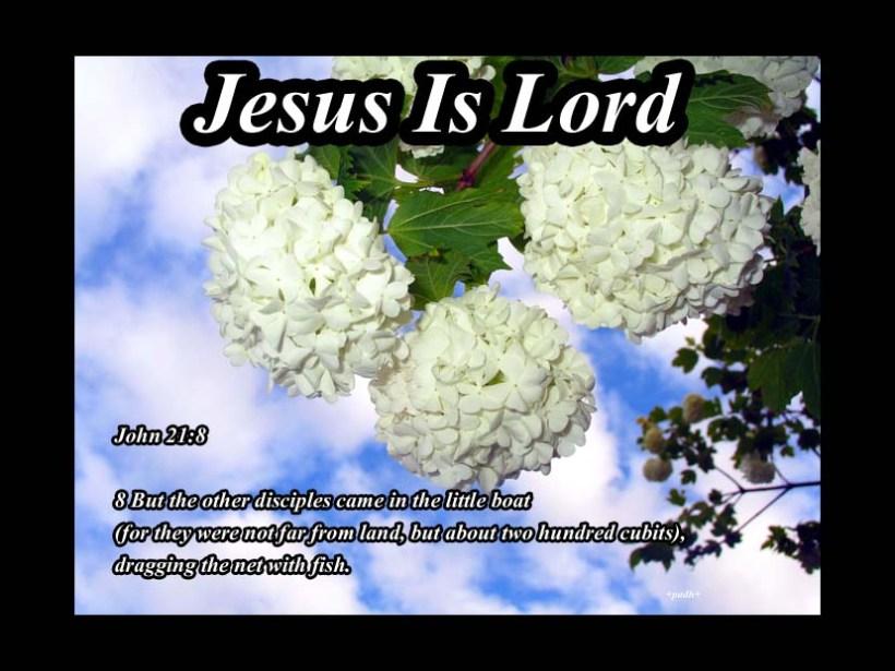 John 21: 8