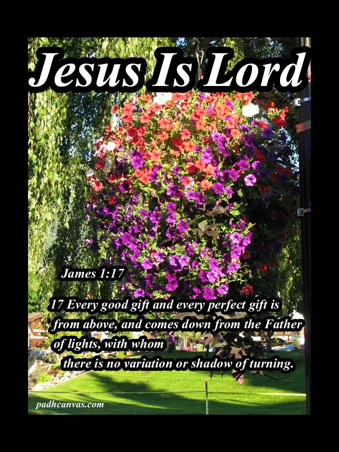 James 1: 17