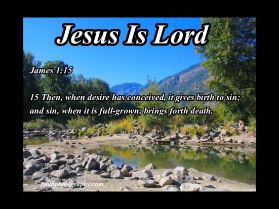James 1:15