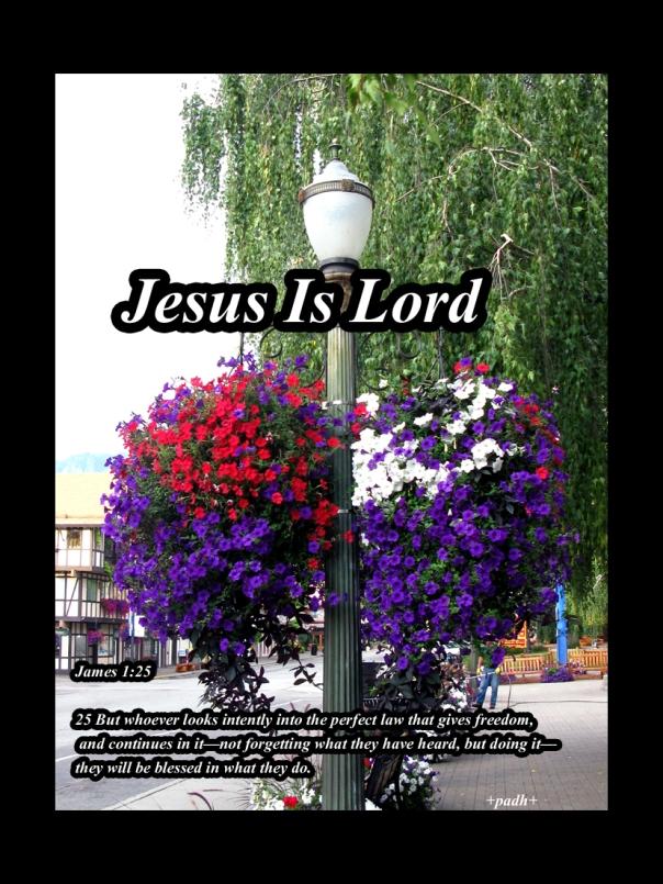 James 1:25