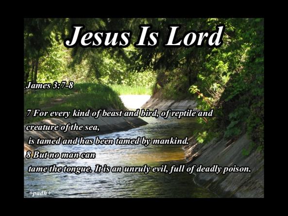 james 3: 7 -8