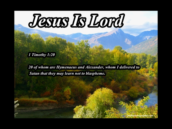 1 Timothy 1 20