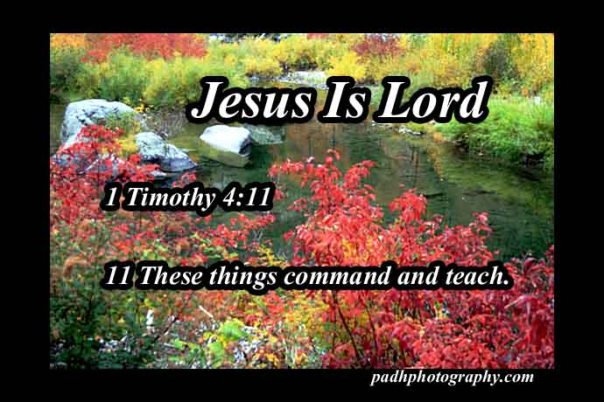 1 timothy 4 11