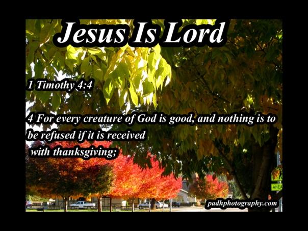 1 Timothy 4: 4