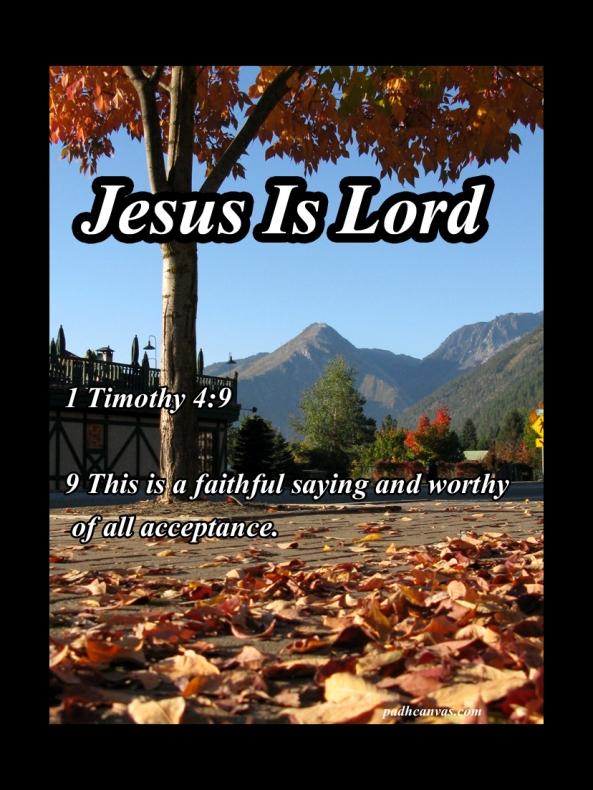 1 Timothy 4 9