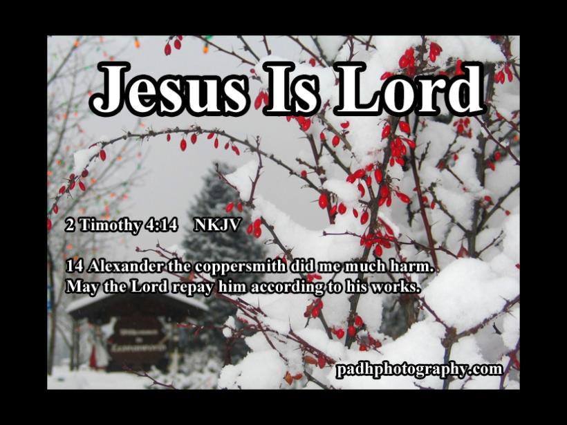 2 Timothy 4 14