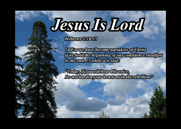 Hebrews 3 14 15