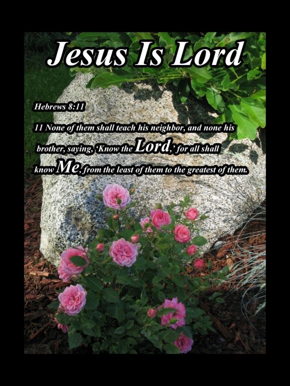 Hebrews 8 11