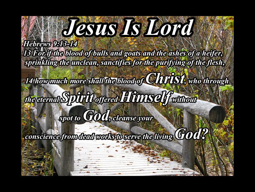 Hebrews 9 13 14